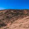 neon-fence-canyon-golden-cathedral-escalante-canyoneering-rappelling-tracy-lee-101