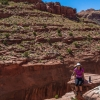 neon-fence-canyon-golden-cathedral-escalante-canyoneering-rappelling-tracy-lee-129