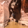 neon-fence-canyon-golden-cathedral-escalante-canyoneering-rappelling-tracy-lee-192
