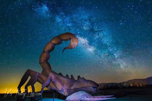 borrego-springs-milky-way-tracy-lee-scorpion